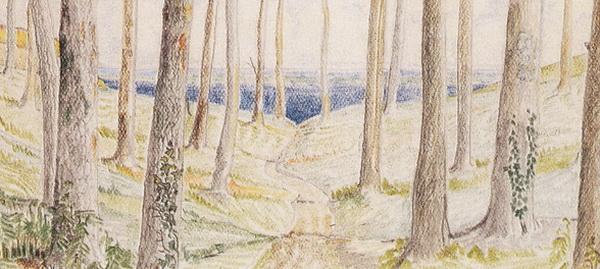 1928 Tumble [Timber] Hill-TEASER.jpg