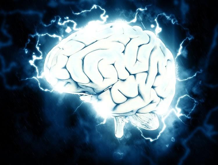 День в истории медицины: первая трансплантация выращенных нейронов в мозг