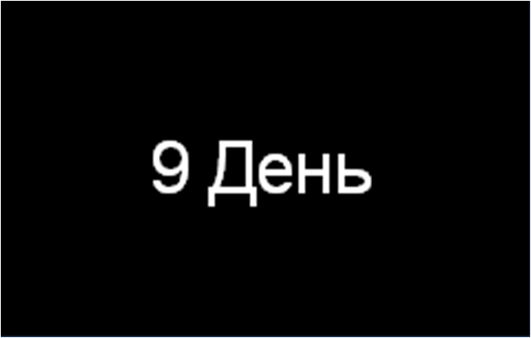 день 9
