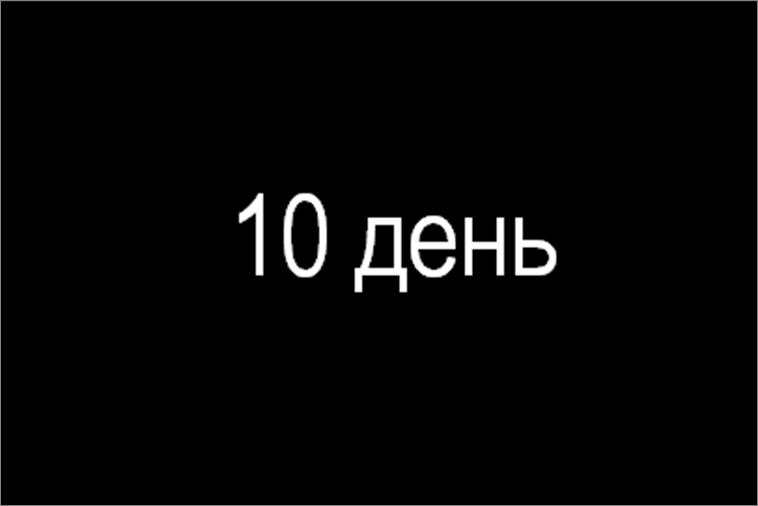 день 10
