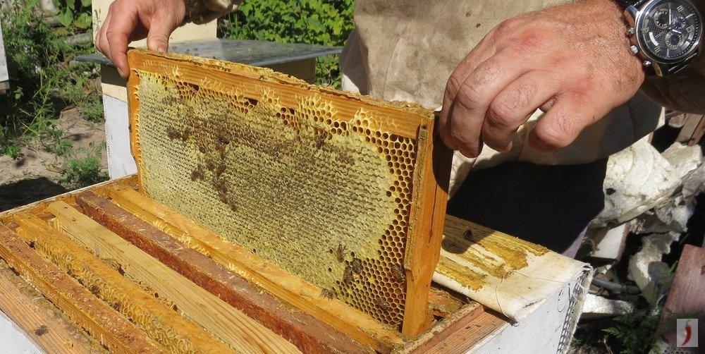 - мёд