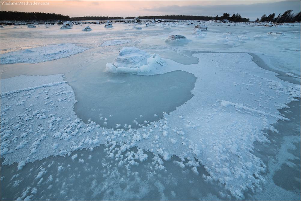 Ледяные Розы на Белом море.