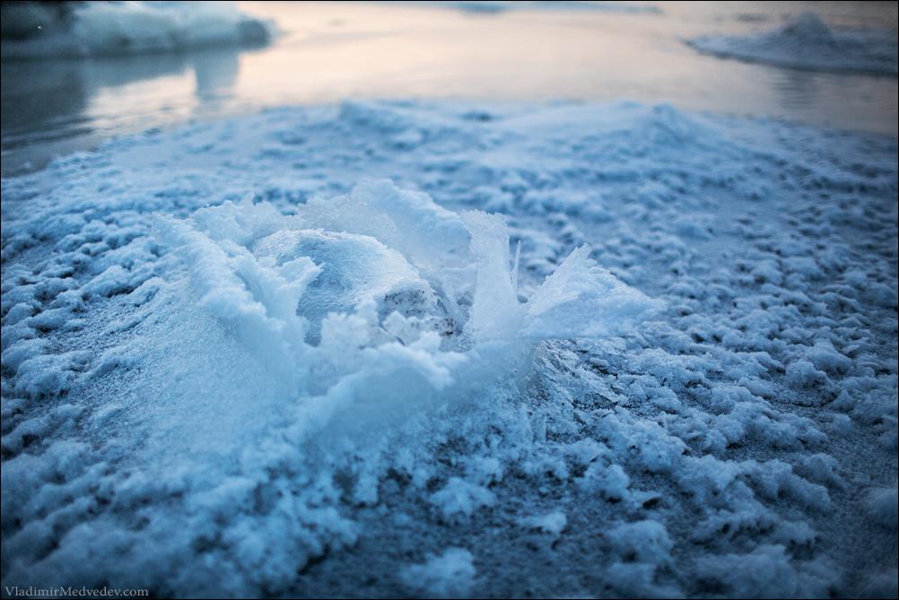 Ледяная роза. Белое море.