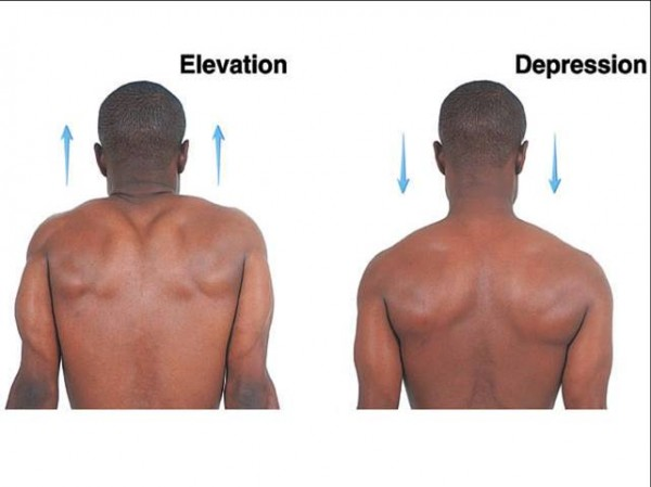elevation___depression