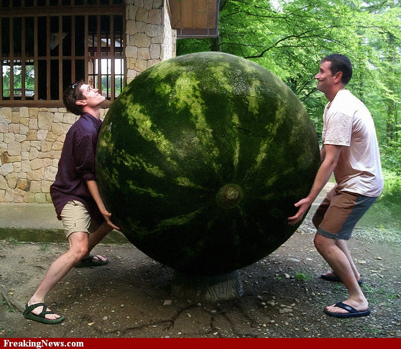 Men-Lifting-Huge-Watermelon-62448
