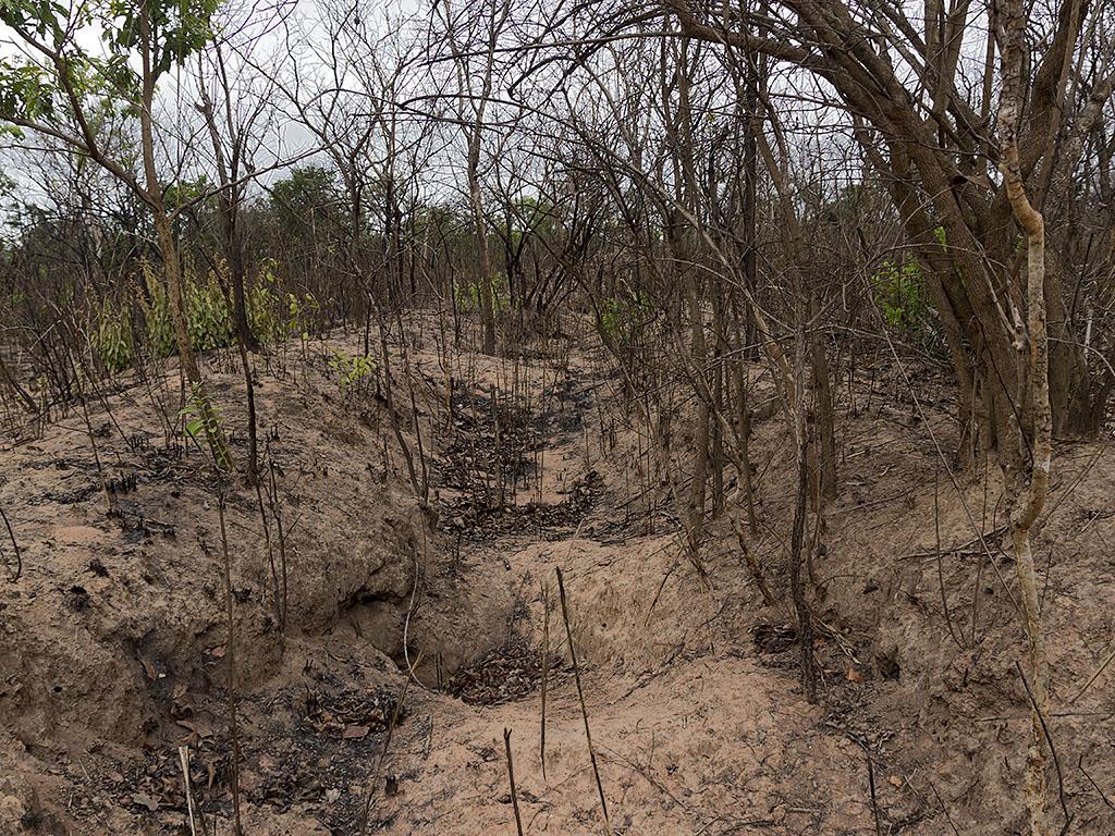 Война в Анголе