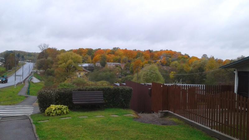 Оранжевых деревьев пока мало. Осень ещё жадничает на золото. (Фото автора)