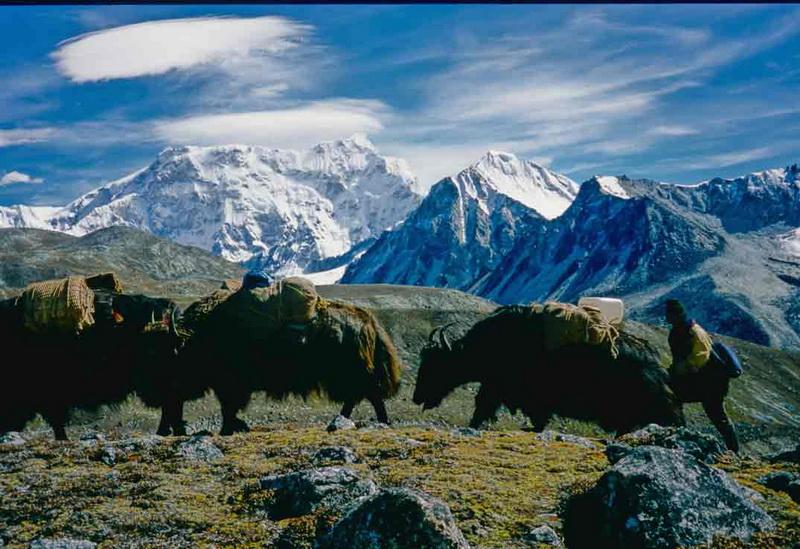 Окрестности горы пустынны. Но пастухи сюда захаживают.