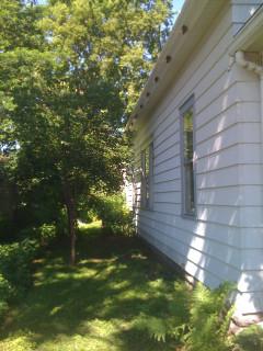 yard south