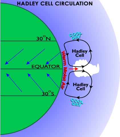 HadleyCell.diagram