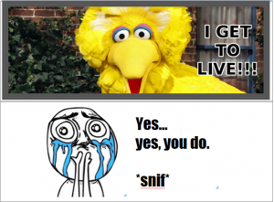 BigBirdLives.sniffyesyoudo