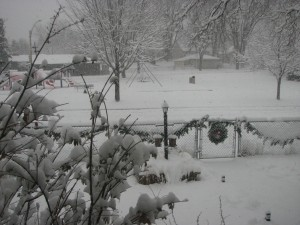 snow.20121209
