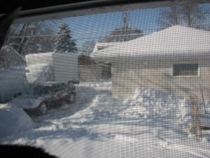 20121210.snow.cat