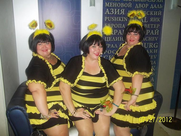 Пчелка майя картинки большого размера этого снимок
