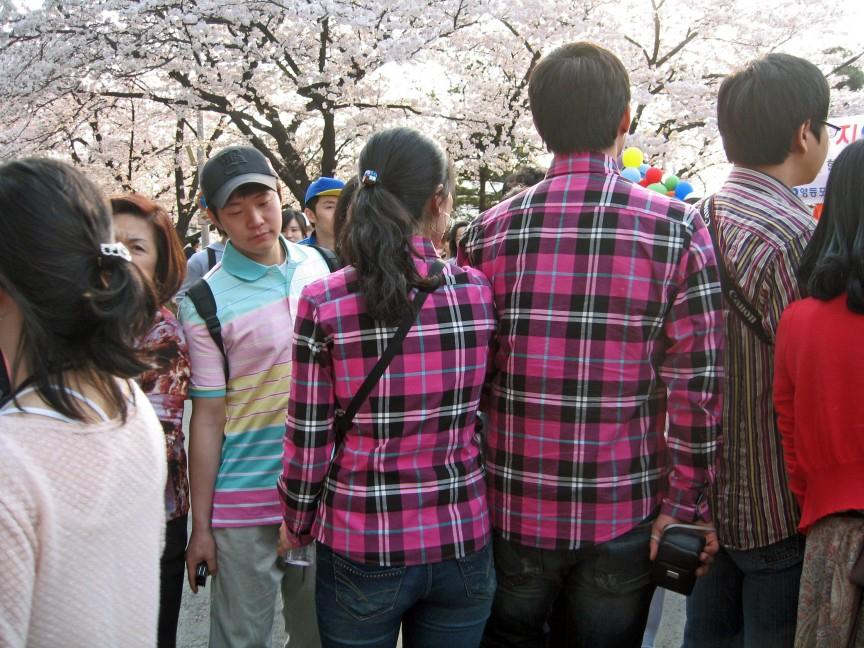 почему корейцы любят худых