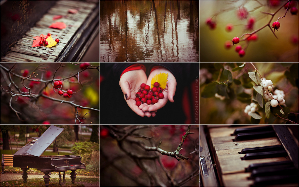 rena_red_autumn_collage