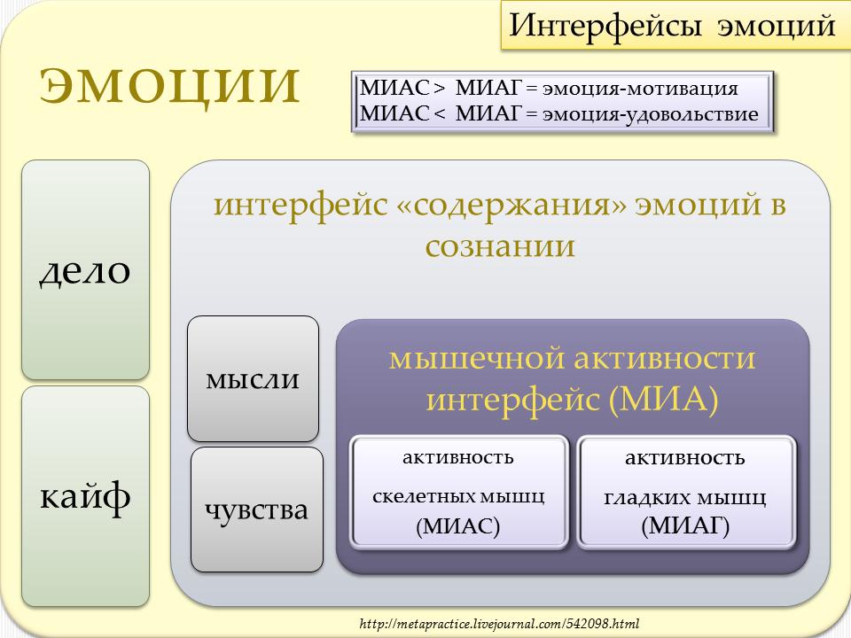 Мышечный интер ЭМОЦИЙ