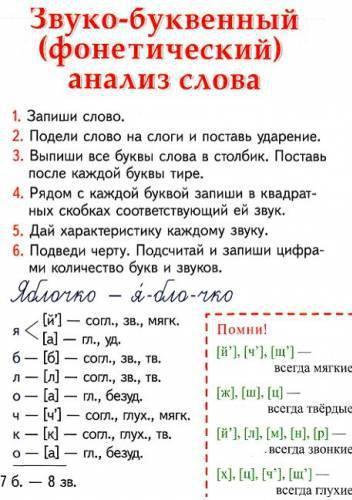 Фонетический разбор слова схема онлайн фото 526