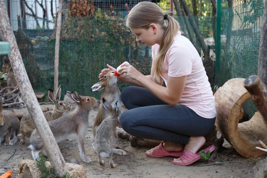 Кристина Григорьева, фотография из блога https://metroelf.livejournal.com/