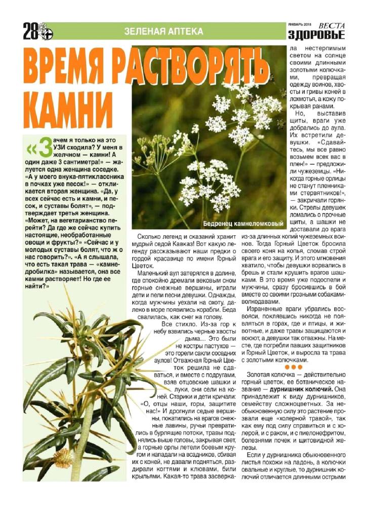 Можно ли после удаления желчного пузыря пить желчегонные травы, препараты, сборы