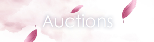 mew_ricle - Auctions