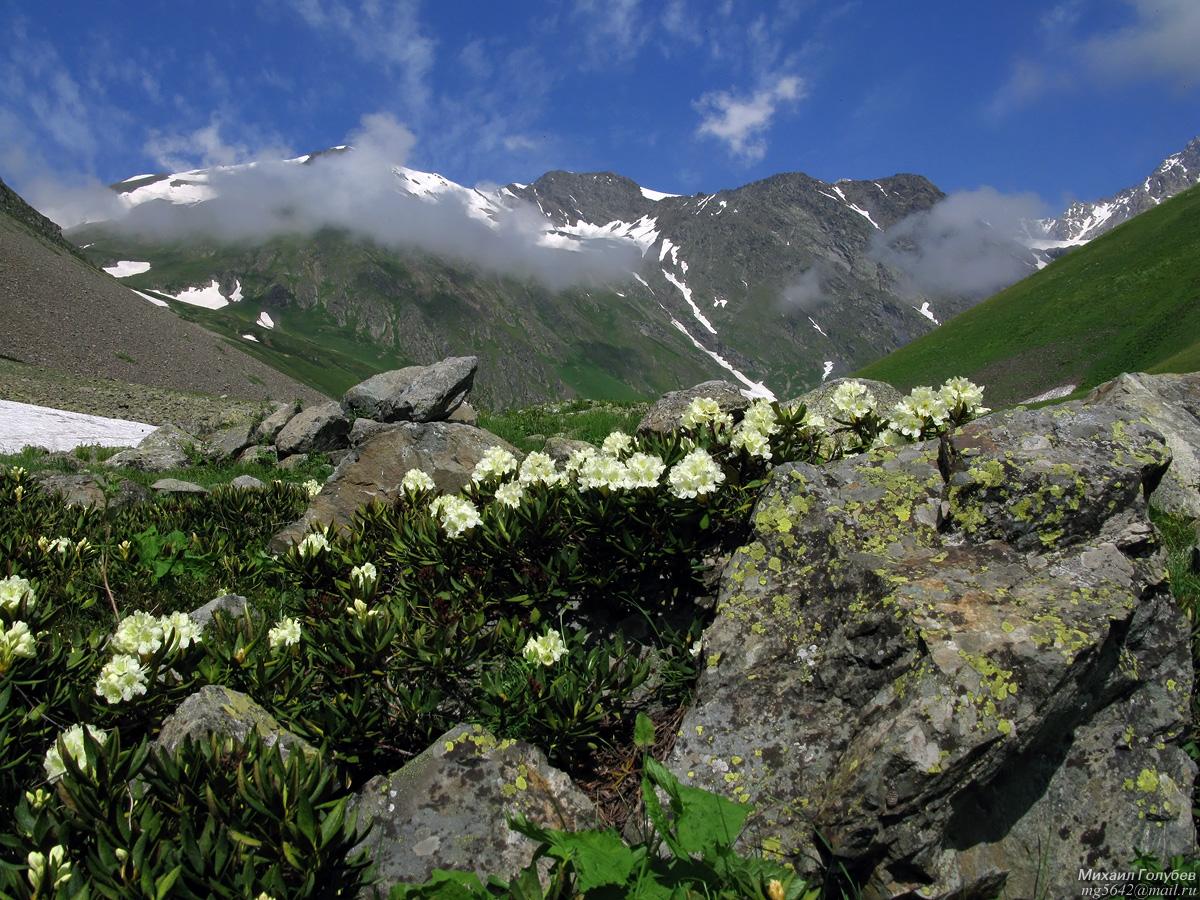 Фото гор северной осетии очень высокого качества чем