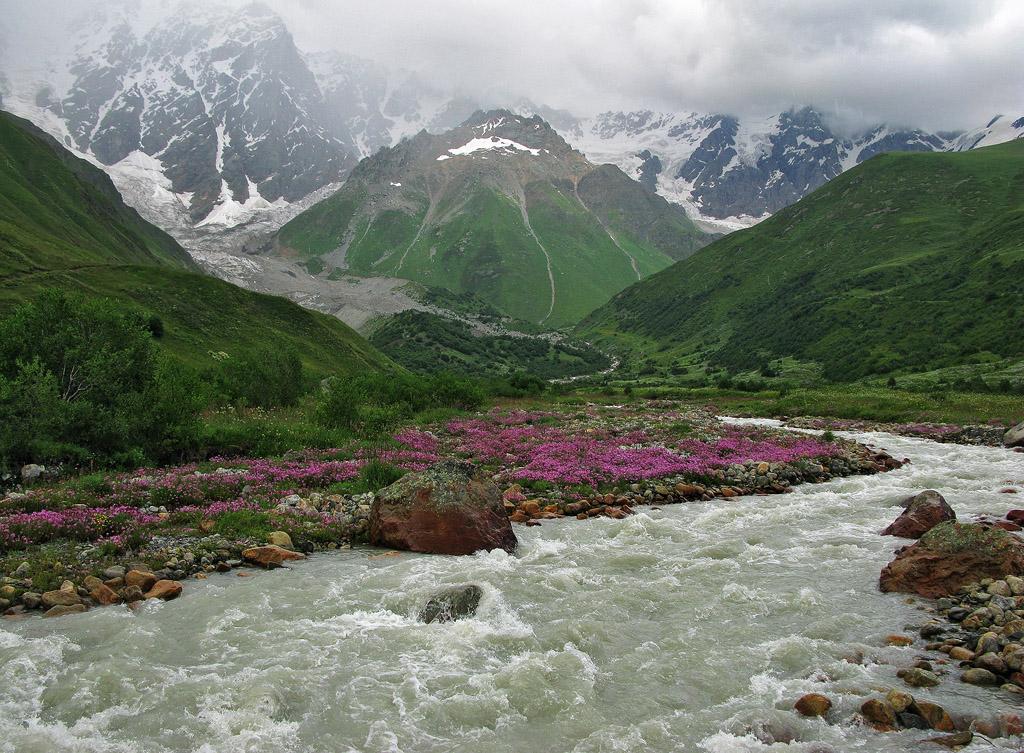 густое разноцветье Алания долине Ингури