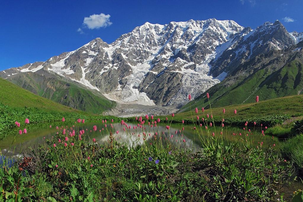 величественная вершина Шхара