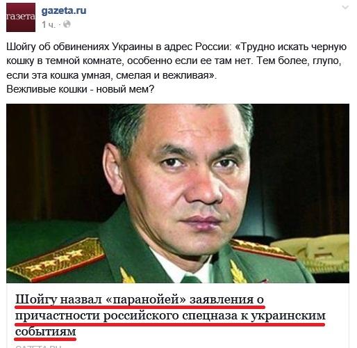 Шойгу-паранойя-1