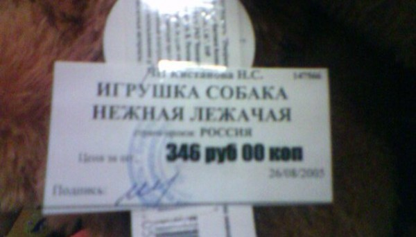 DSC_54003