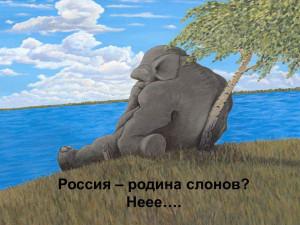 россия и слон