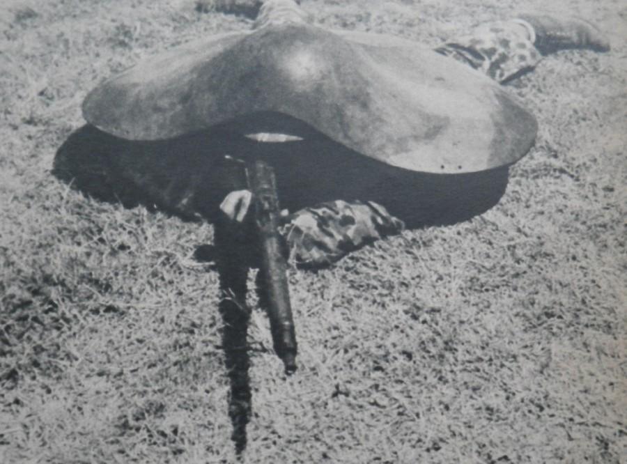 черепашки-ниндзя