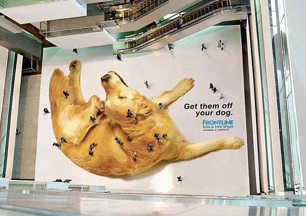 Люди-блохи / Реклама в Узбекистане, рекламные агентства в Ташкенте.