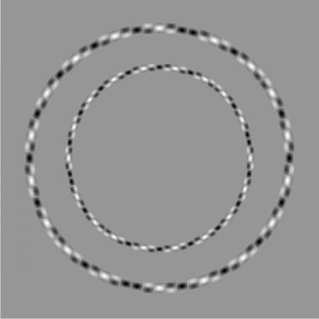 concentric-circle-optical-illusion-2