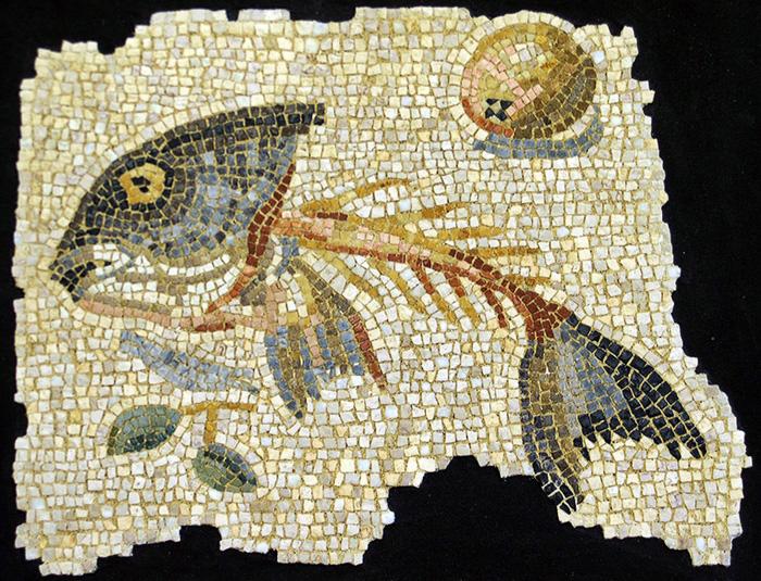 asaroton Aquileia-ari kokomosaico