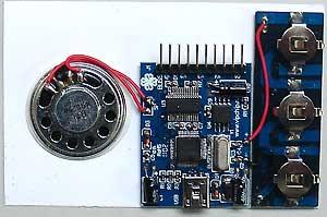 BUSB06M.module