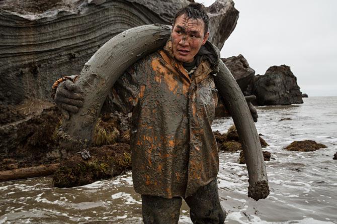 13-mud-covered-milyutin-carries-tusk-670
