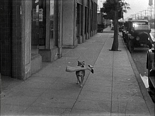 Still from the «Dumb Daddies» by Hal Yates.1928