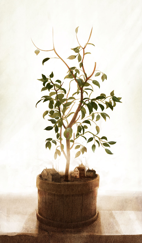 drzewo szkic3