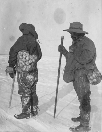 Penguin Egg hunt on Robert Falcon Scott's 1901 Discovery Expedition