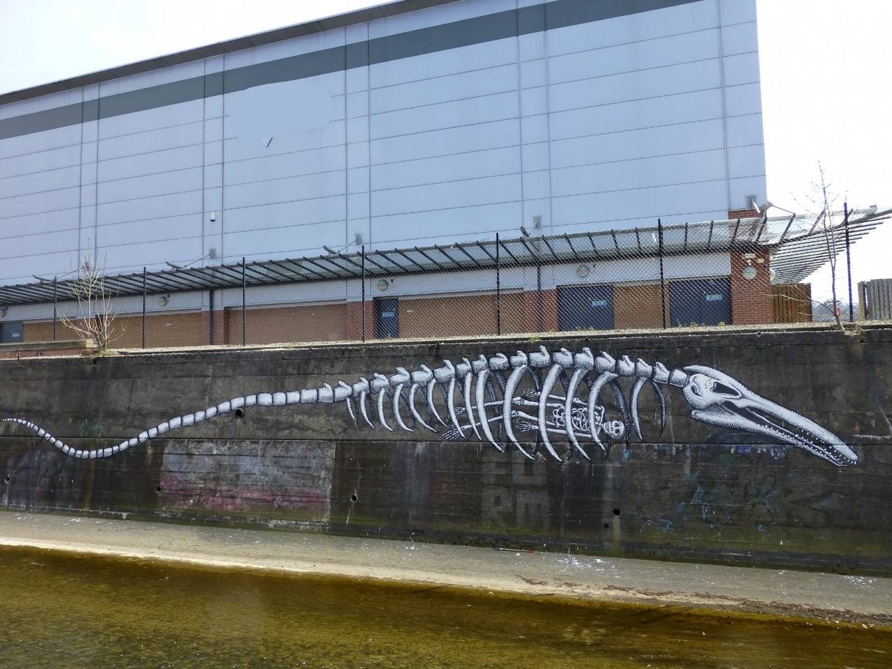 fossils2sheffield