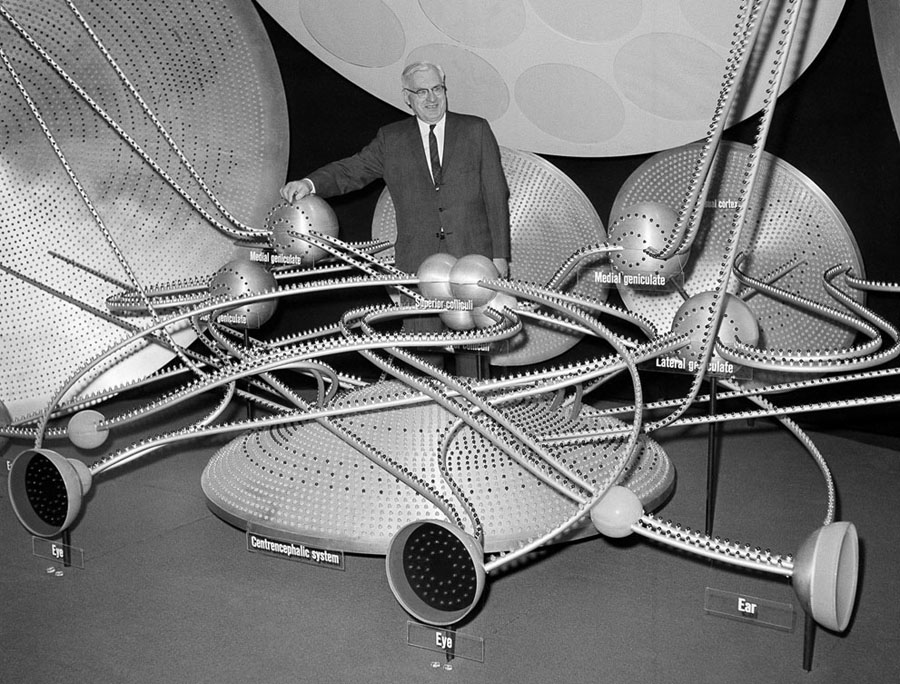 A giant electrified model of the human brain's control system is demonstrated by Dr. A.G. Macleod, at the meeting of the American Medical Association in New York, on June 26, 1961.