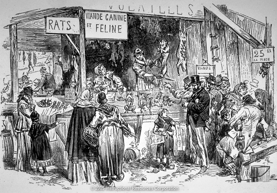 A rat, cat, and dog meat market in Paris during the siege of 1870-1871
