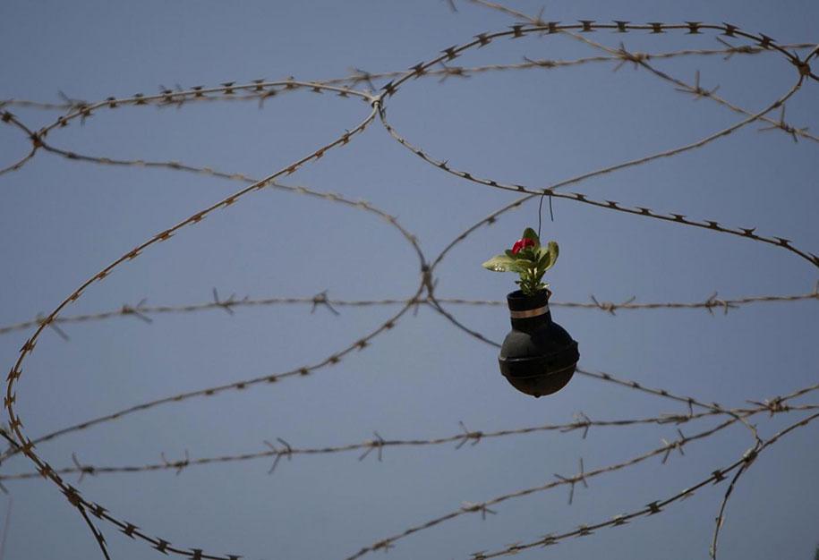 tear-gas-grenade-flower-pots-palestine-8