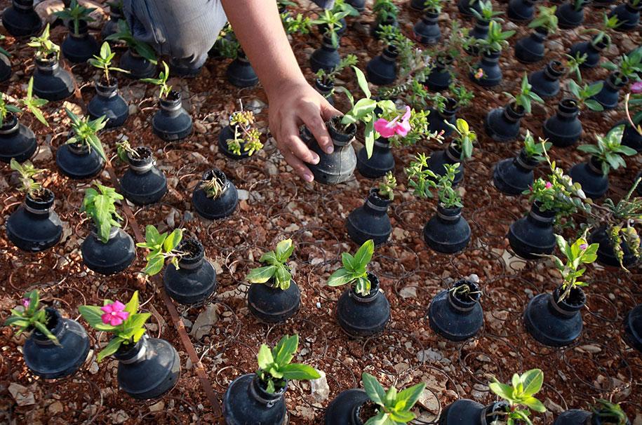 tear-gas-grenade-flower-pots-palestine-5