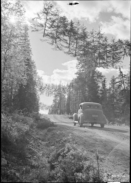 A camouflaged road 10 km from Russian border. Finland, June 27, 1941.