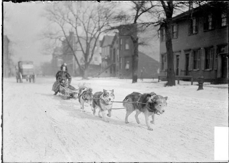 Dog sled pulling a mother and child down a snow covered street in Chicago, c.1904