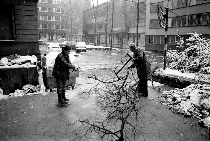 Citizens of Sarajevo collecting firewood during the Siege of Sarajevo in 1992:93