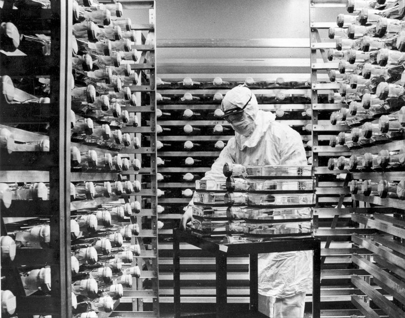 Live samples of the measles virus (used to make the measles vaccine) are stored in an incubator at a Pfizer virus laboratory, in 1963