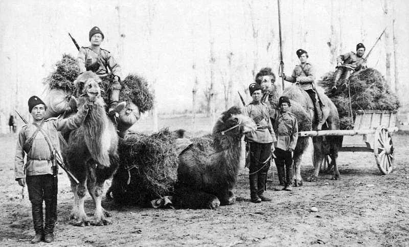 Orenburg cossaks. 1880